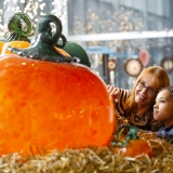 a young girl and an older woman gaze at two extremely large orange glass pumpkins with green stems